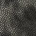 Zilver Fantasie Reptiel Leer