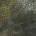Goud Fantasie Reptiel Leer